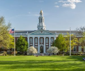 Summer internship scholarship at Harvard University